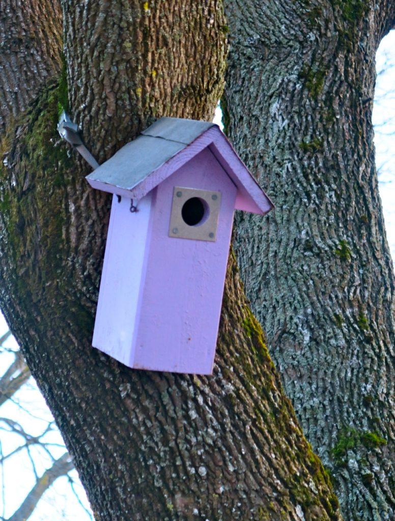 Upplysand fågelholk i Uppsala-