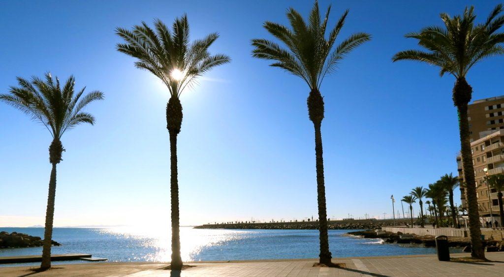 """Lätt svajande palmer och en sol som både leker """"titt ut"""" och speglar sig i havet."""