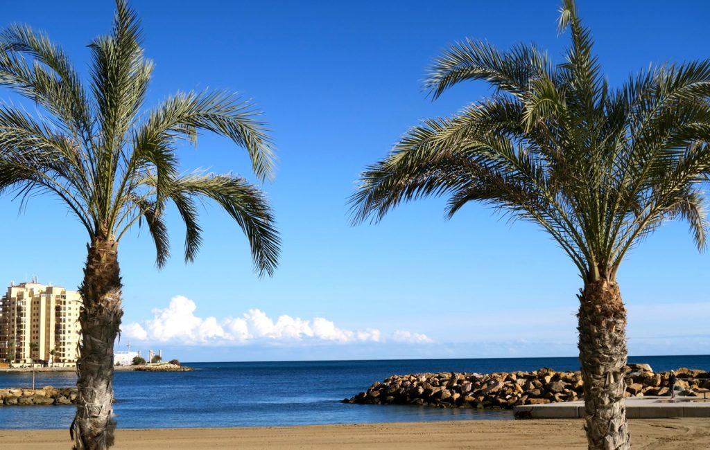 Lätt svajande palmer, blå himmel och blått hav piggar upp.