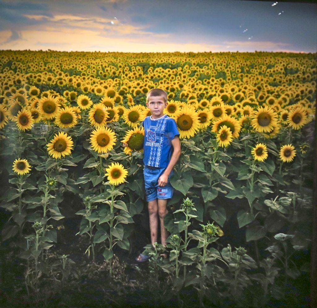 """En pojke i fokus på ett solrosfält i Moldavien. Bilden igår i Åsa Sjöströms utställning, Silent Land"""" på Fotografiska i Stockholm"""