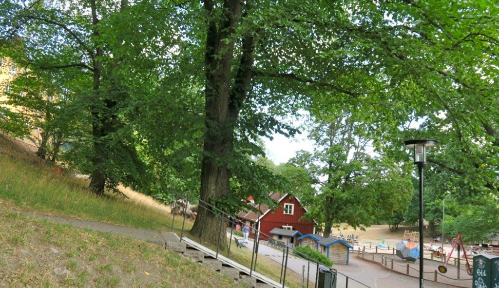 Stora Blecktornsparken på Södermalm erbjuder gott om skuggande träd.