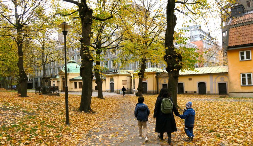 Oktoberdag i Stockholm. Många träd har fällt sina gula löv. Här passerar  barnbarnen Max och William Klara Kyrkogård tillsammans med sin mamma Liv. df224f10e34d0