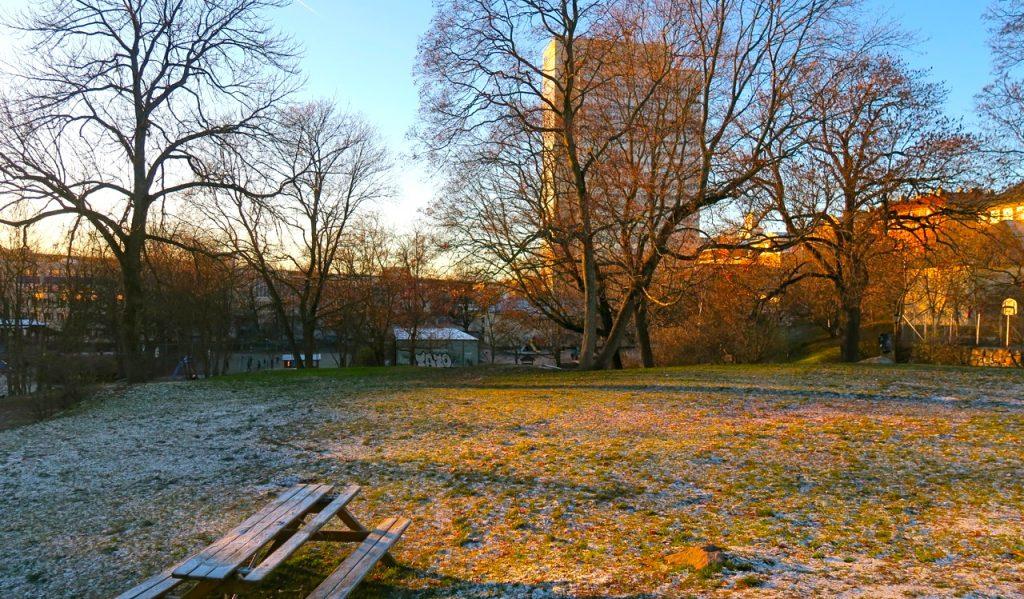 Tullgårdsparken är en oas i mina kvarter på Södermalm