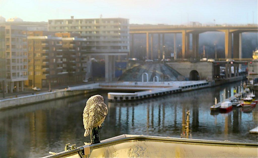 Bild tre av tio. KLockan har hunnit bli 10 och dimman har lättat och den blå himlen dyker upp- Nu ser man Hammarbykanalen och Hammarbyslussen igen.