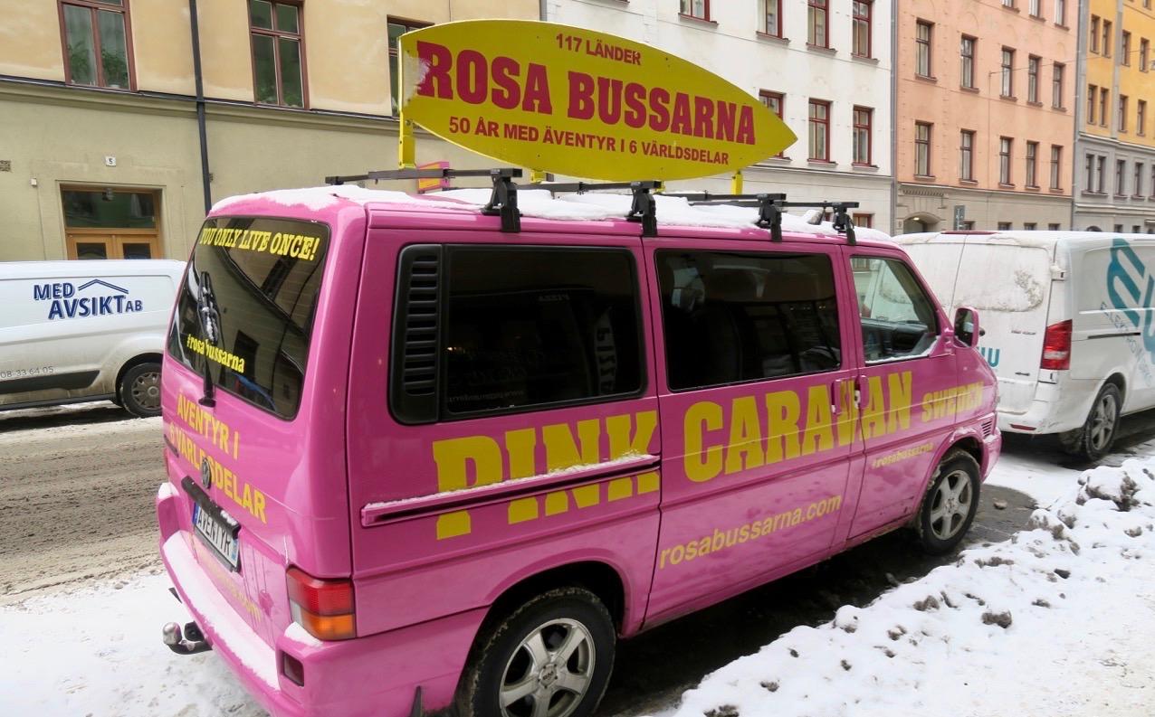 """Skär eller rosa? I princip två ord för denna ljustosa färg. """"Rosa bussarna"""" tar dig runt i världen."""