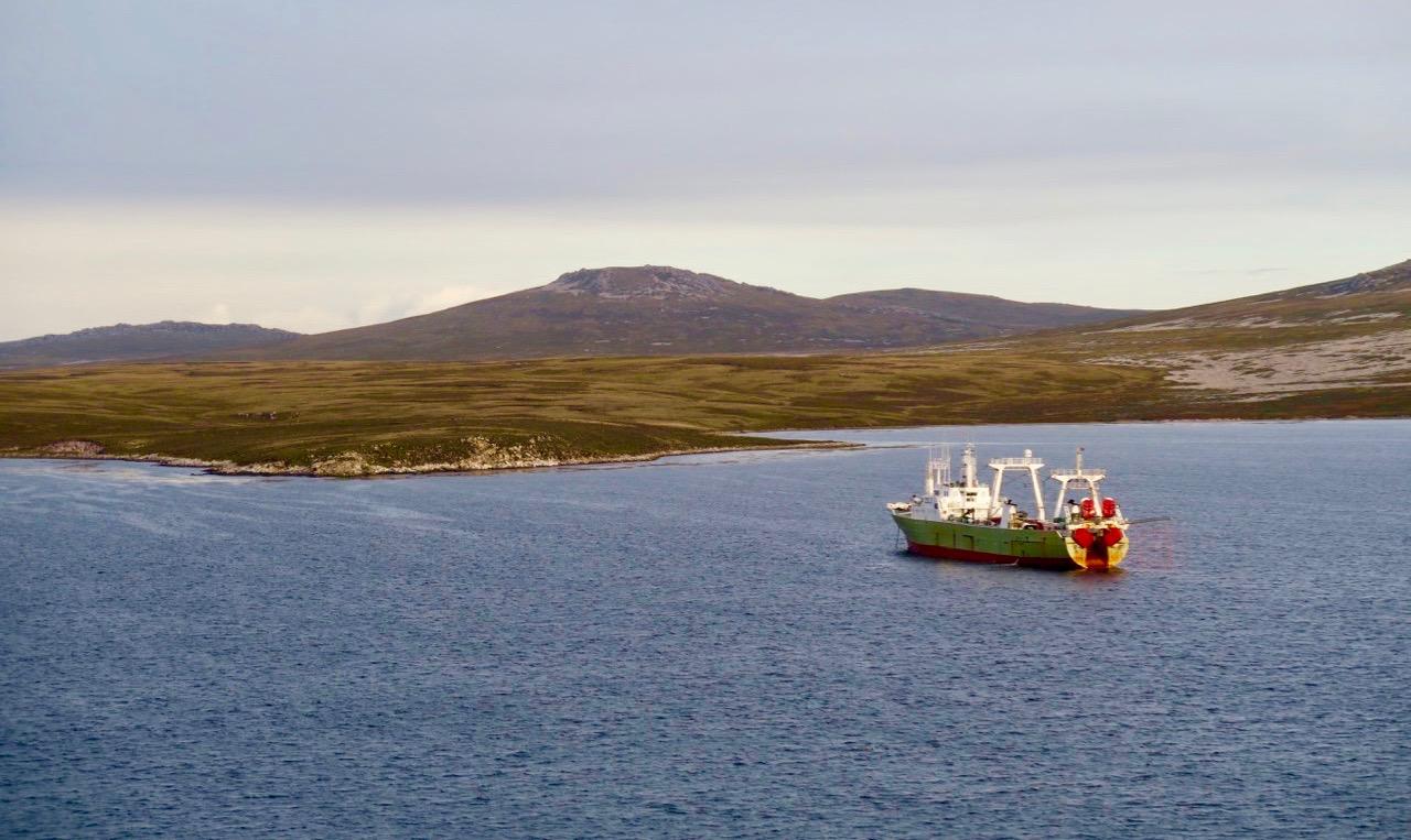 Falklandsöarna har ett klimat och en natur som påminner om Färöarnas. Dock inga pingviner där.