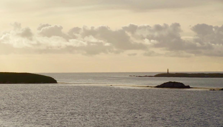 Naturen här på Falklandsöarna är bedövande vacker.