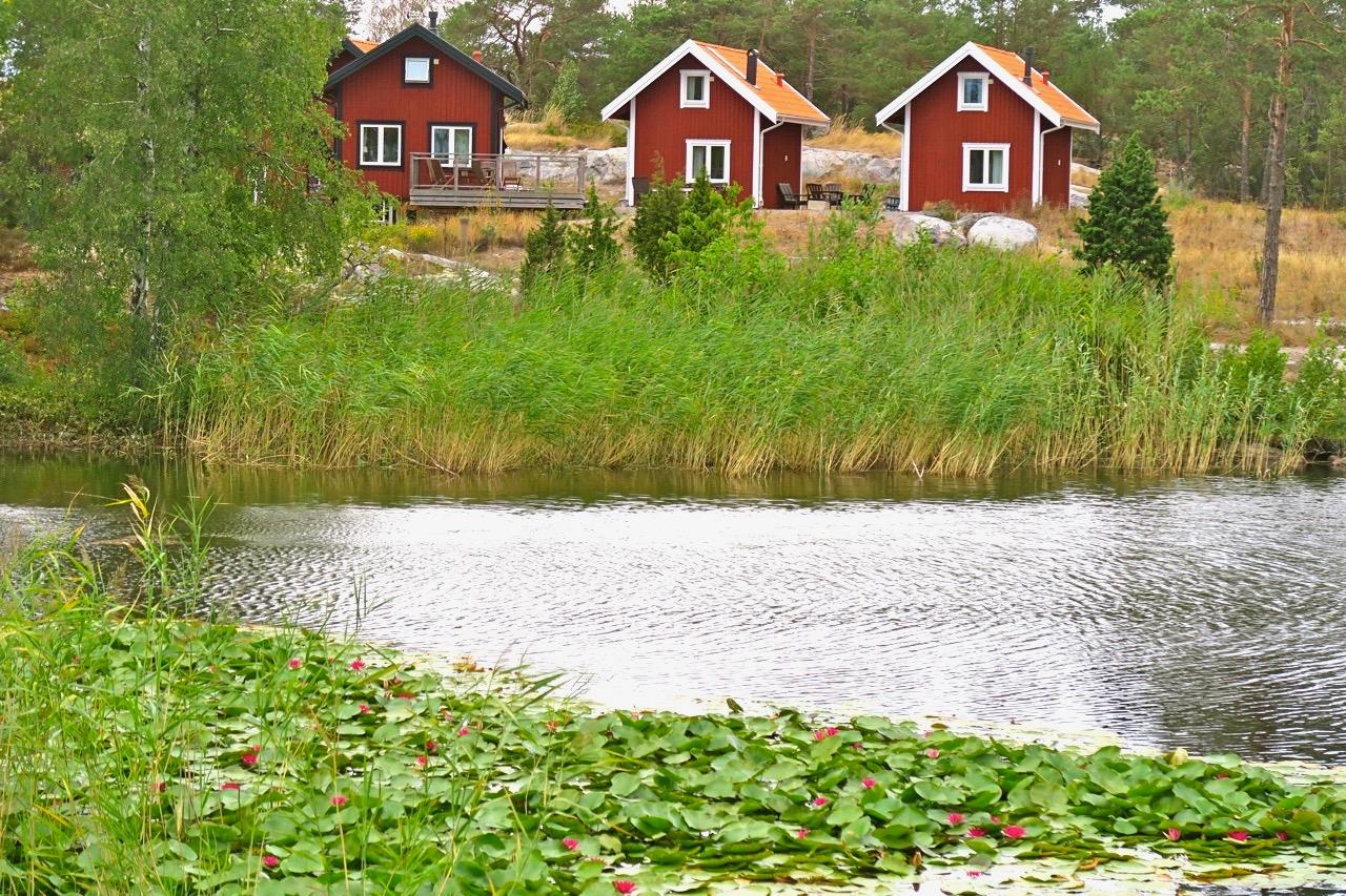 Vass, roda stugor och röda näckrosor finns det på Harstena i Gryts skärgård i Östergötland