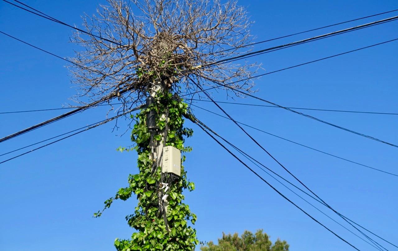 Denna elstolpe med tillhörande elledningar på vår gata i Torrevieja var det ett sant nöje att se. Lite ovanligt.