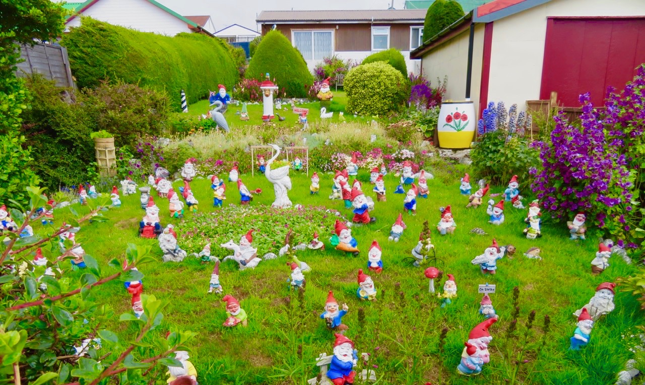 I en trädgård i Stanley på Falklandsöarna såg vi mängder av tomtar men tror de var av keramik och och inga ätbara skumtomtar