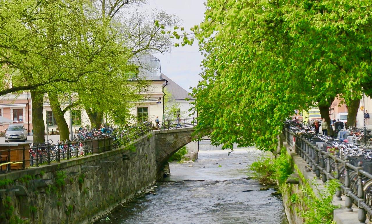 Vackert grönska längs i Uppsala och särskilt längs Fyrisån.