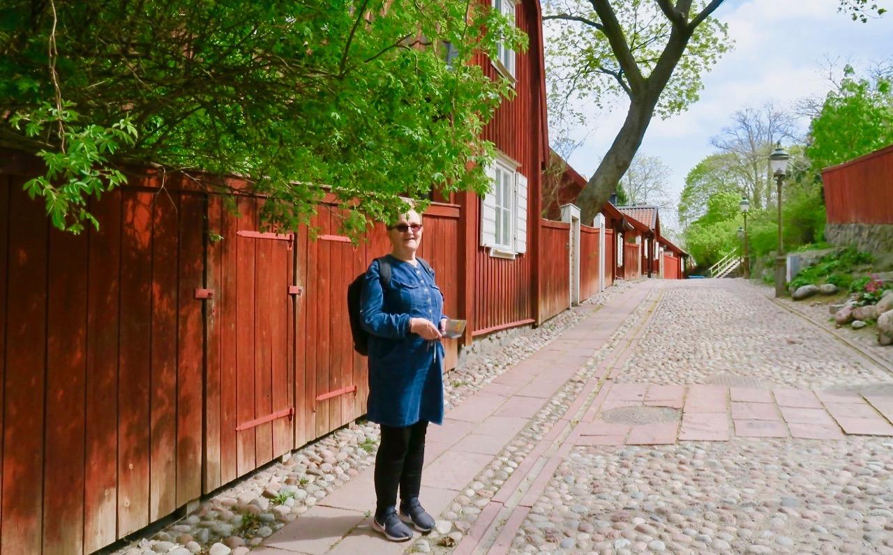 En södervandring tillsammans med mig innebär oftast också ett besök på Åsöberget och Lotsgatan