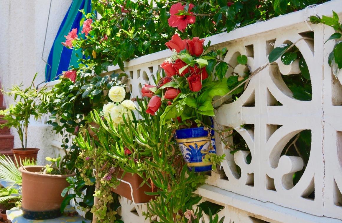 Både nytta och nöje. Många växter var samlade på denna terrass och här gjorde både bin och humlor nytta.