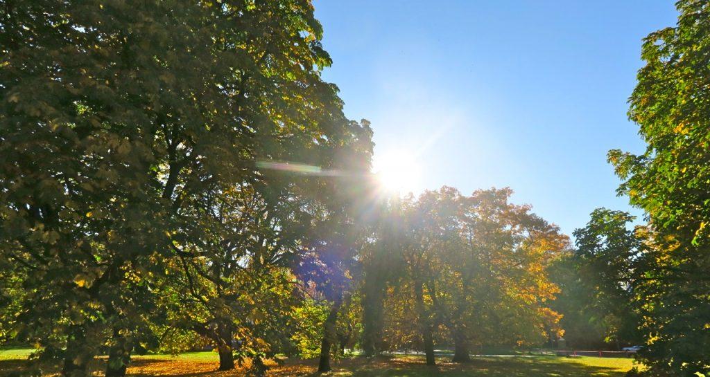 Njutflykt till Rosendals trädgård med solen som fint sällskap