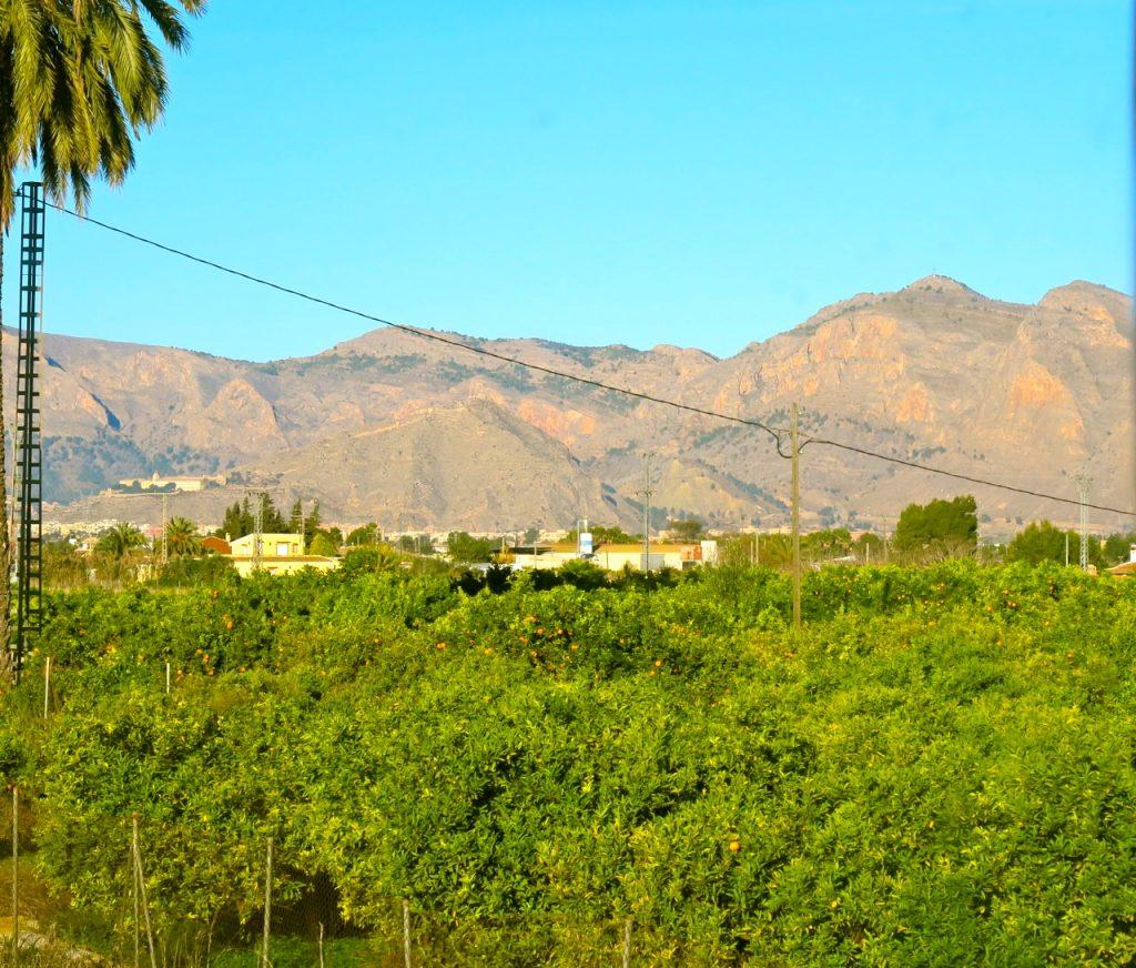 Landskapet är vackert på vägen mellan Torrevieja och Murcia