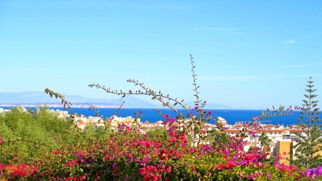 lyckad blandning av grönska, blå himmel och blått hav.