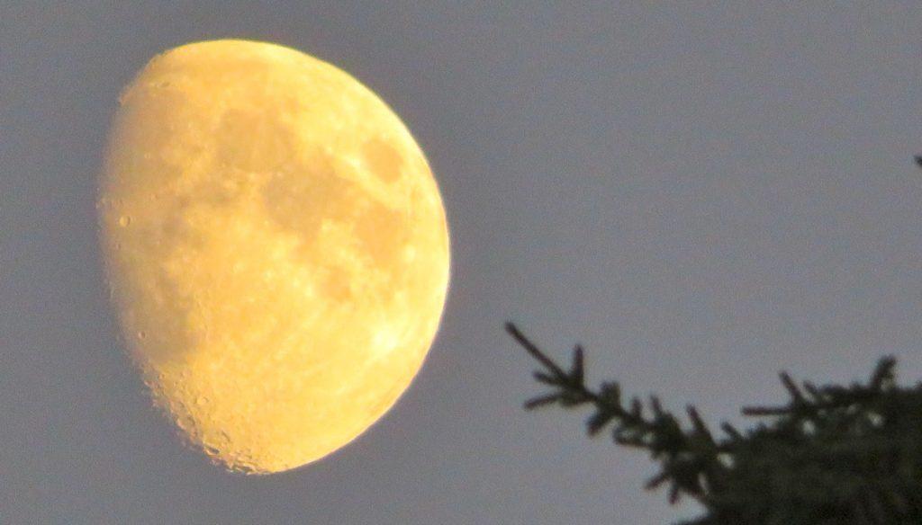 Ibland önskar jag att jag kunde sitta på månen och titta ner och påverka det som jag tyckte var fel och orättvist.