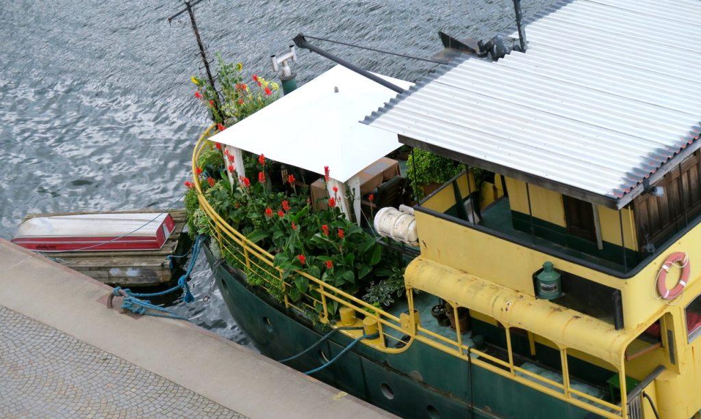 Här grönskar båten i augusti.