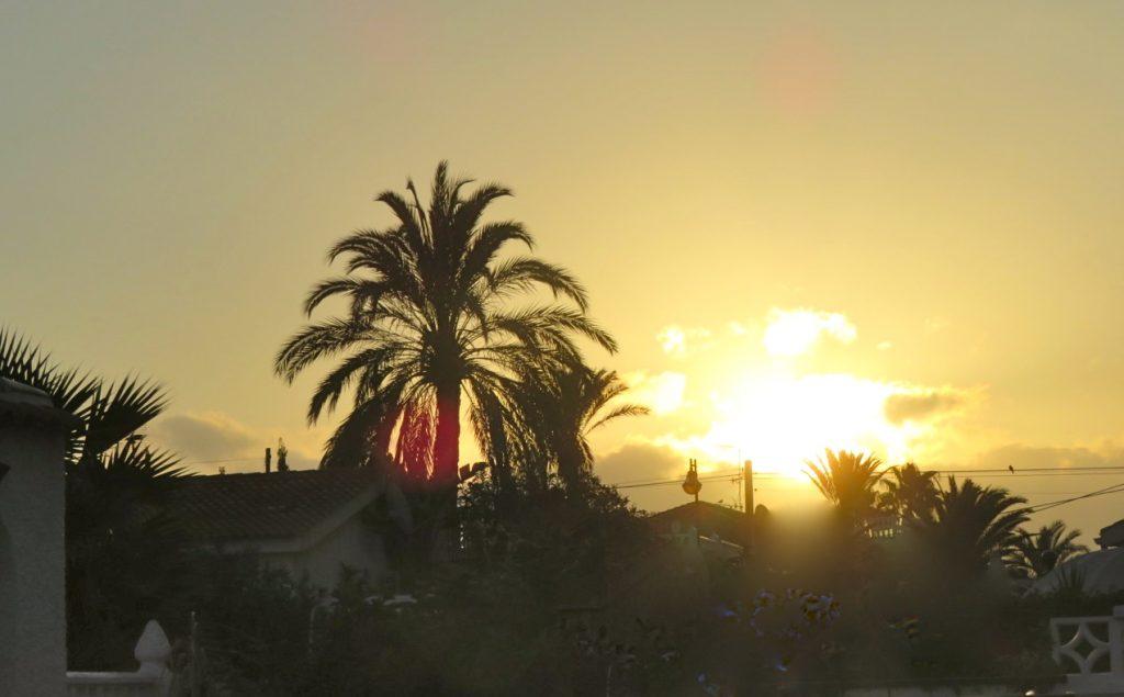 Solen är på väg upp och klockan är 08.15. En morgonpromenad väntar.