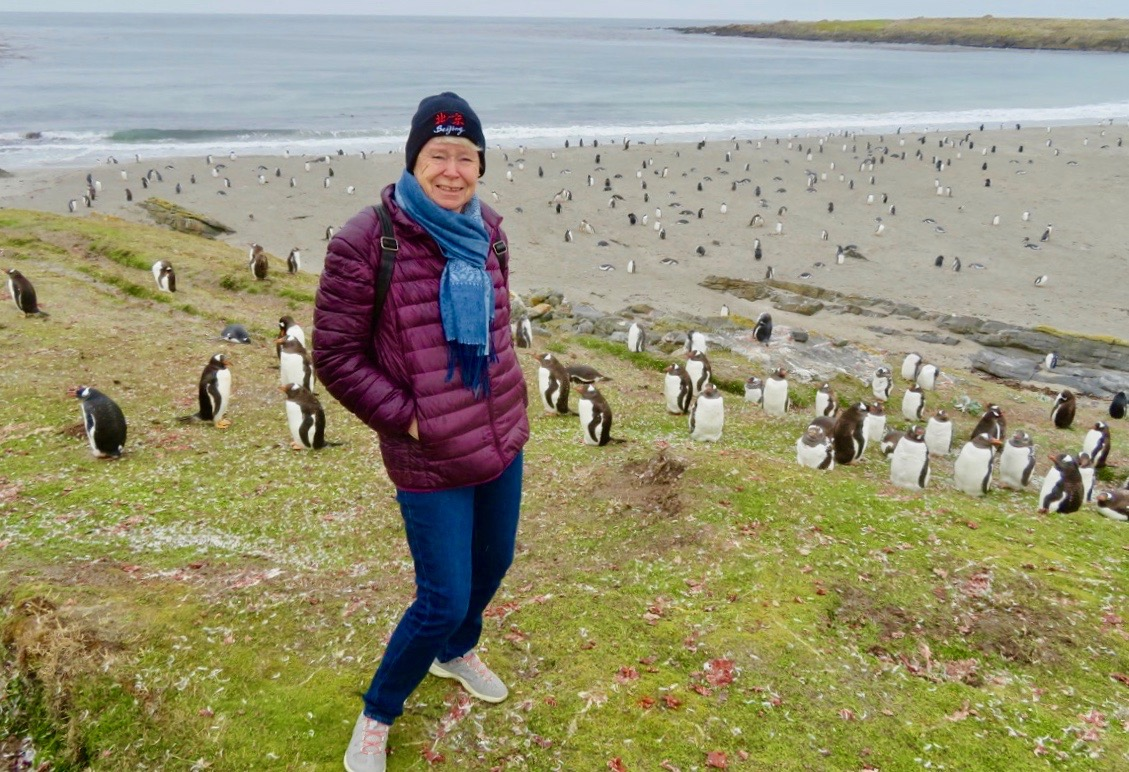 Pingviner fick vi se många av på Falklandsöarna.