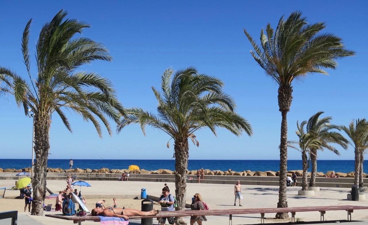 Bänkarna längs strandproromenaden kan också användas för solning. Och särskilt när det är helg och trångt på straönderna.