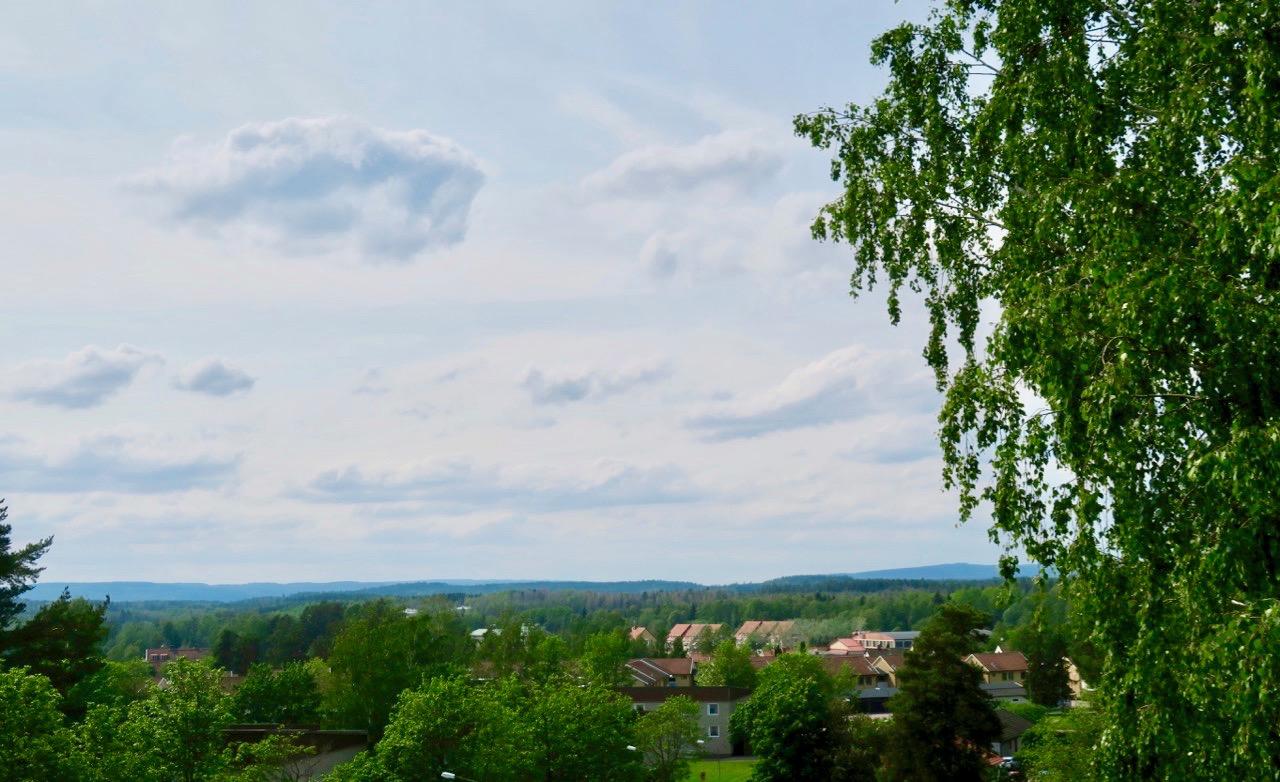 Njutbar utsikt över omgivningarna i Arvika från balkongen.