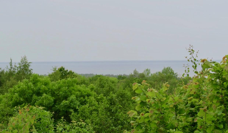 Vad gäller dagens resa var utsikten från Kinnekulle över vänern begränsad.