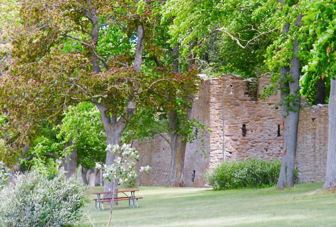 Den botaniska trädgården i VIsby omges av ringmuren