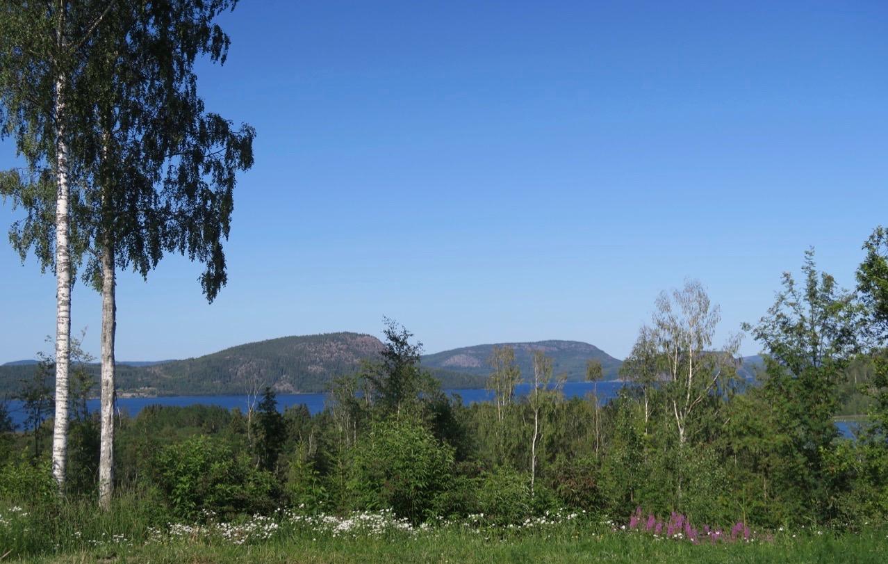 Natur och kultur gör sig fint tillsammans. Här i Salsåker i Ångermanland och besök hos en silversmed.