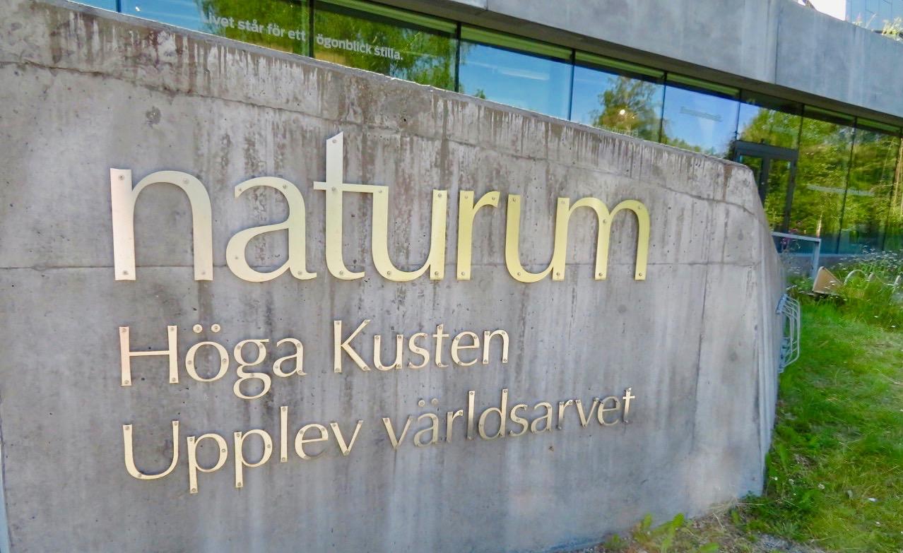 Naturum ger ökad förståelse för hur både Skuleberget och Skuleskogen bildats.