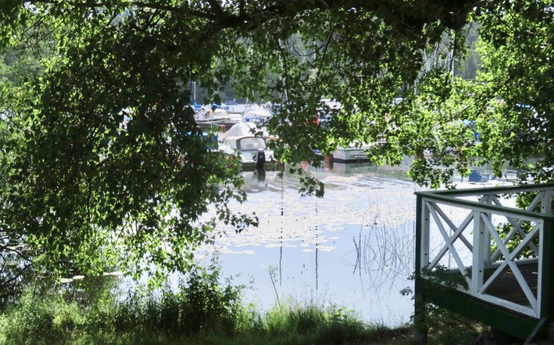 Årstaviken är en del av Mälaren och en promenad här sommartid innebär alltid att närheten till vatten och grönska finns .