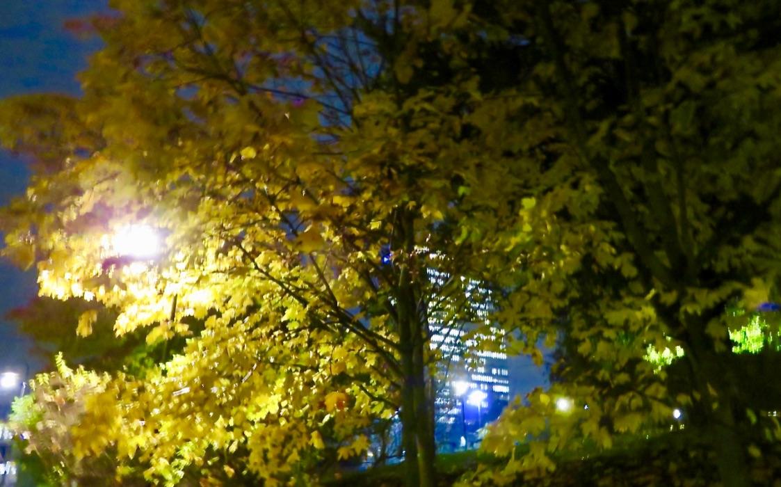 Tisdag kväll.Tullgårdsparken och Folksamhuset lyser upp i mörkret.
