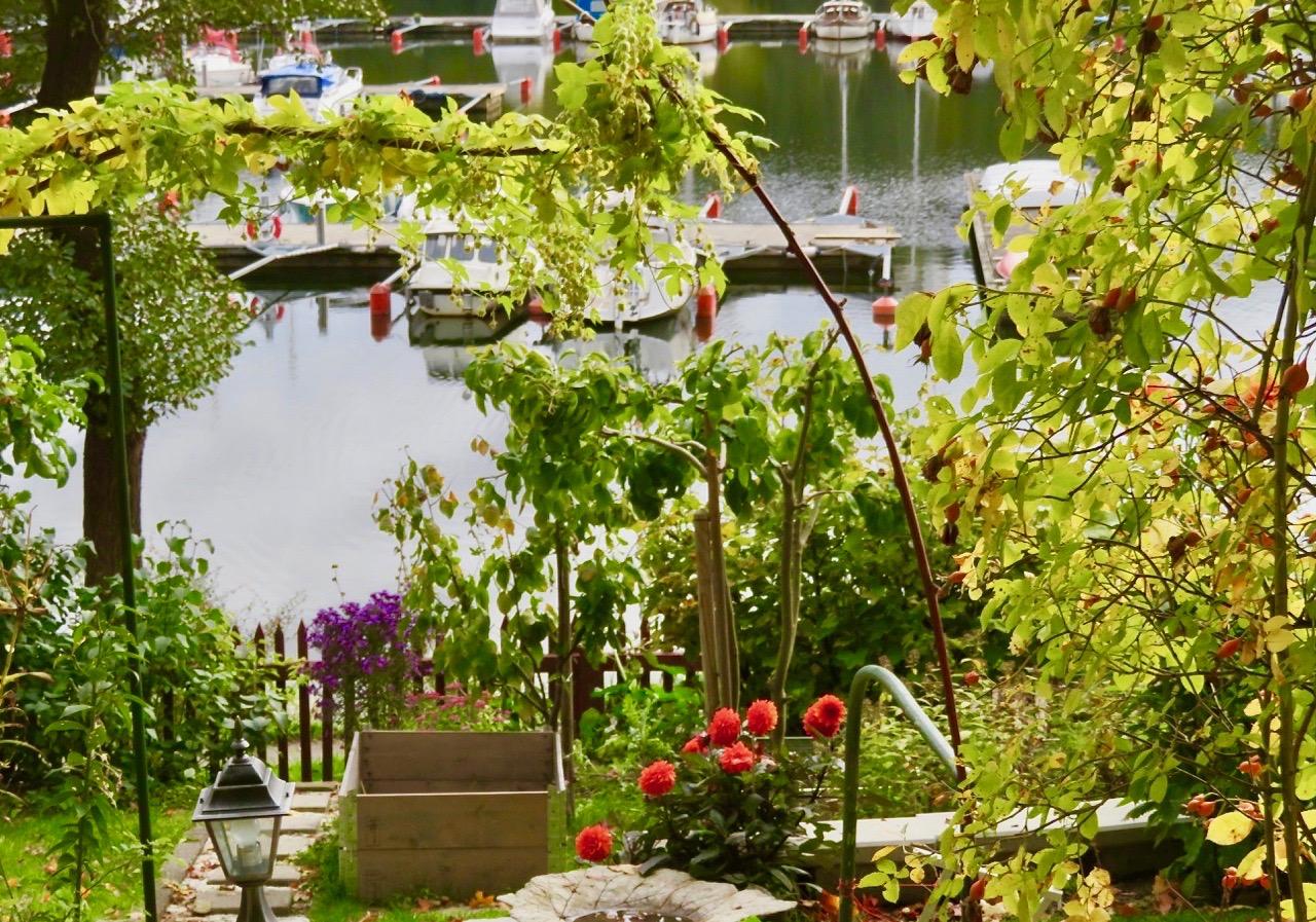 Många vackra höstfärger finns i kolonträdgårdarna i REiksdalslunden.