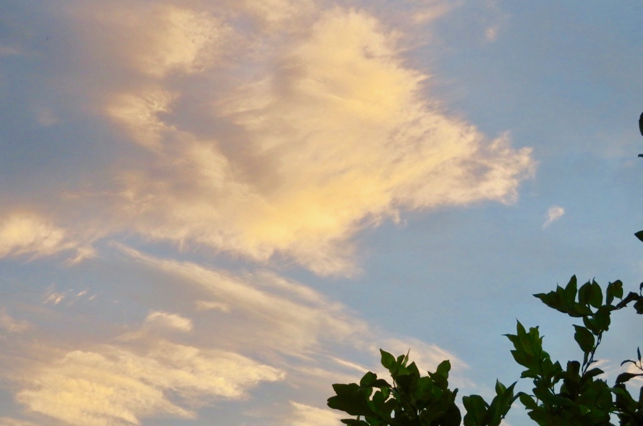 DEnna första fredag i november bjöd på stråöande sommarväder och ätta sommarmoln svävade på himlen.