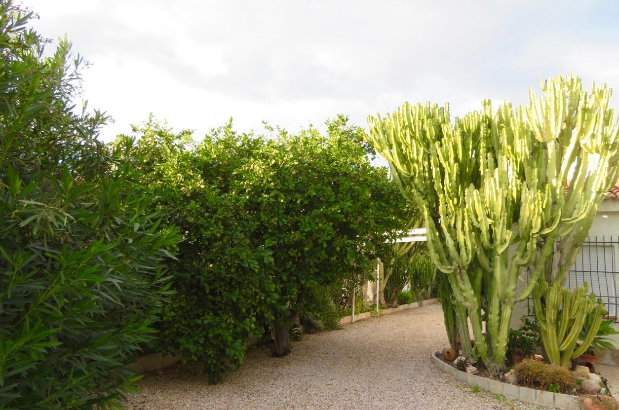 """Här i området """"Los Angeles"""" -jo det heter så, blåste det mindre. Växtligheten i flera av de stora trädgårdarna gav bra vindskydd."""