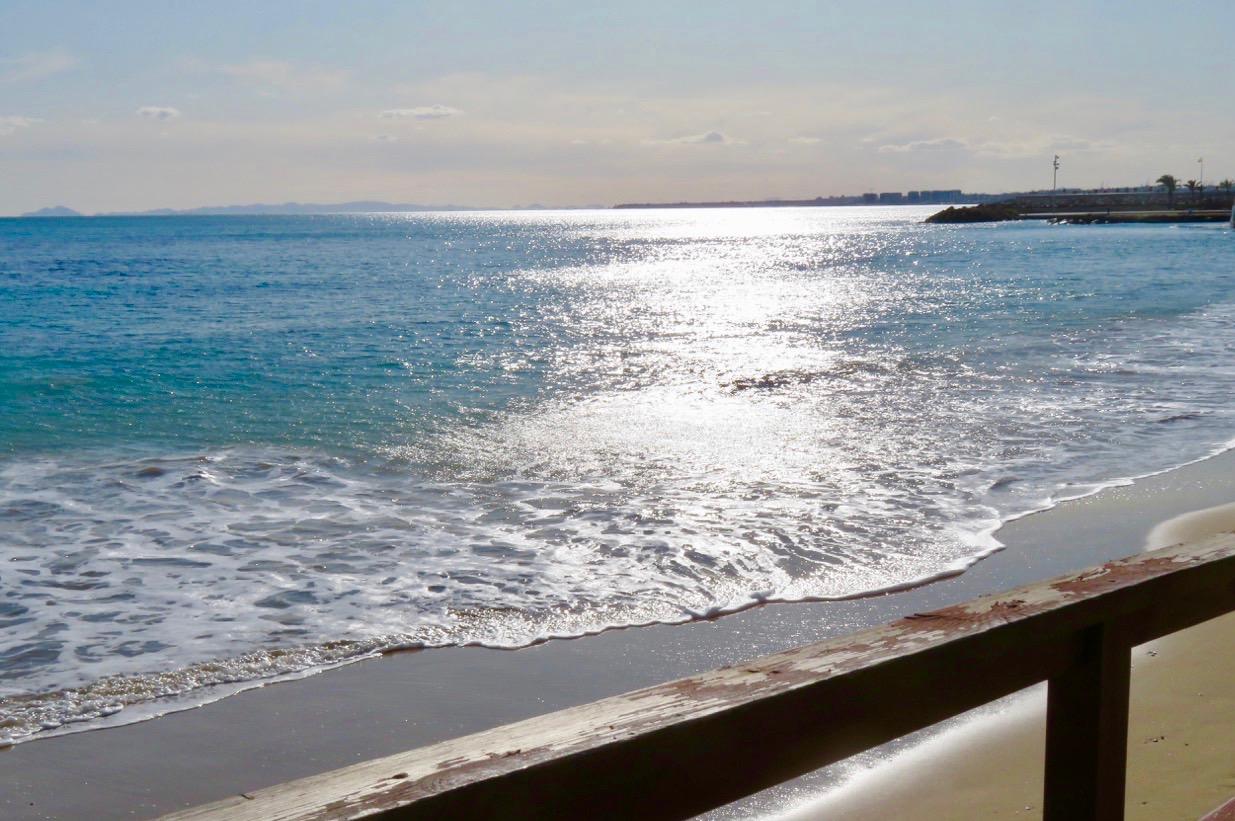 Fredagen bjöd på ett varierat innehåll men bl.a en låmgpromenad längs havet i Torrevieja