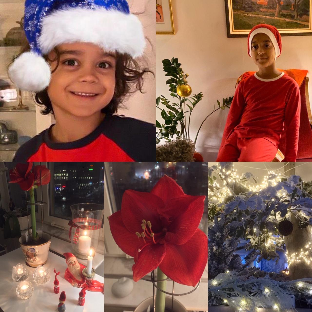 God Jul önskar även mina småtomtar.