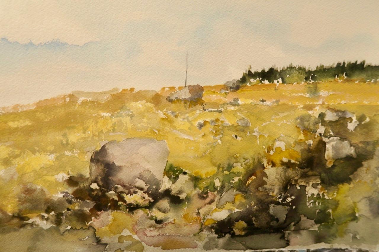 Lars Lerin målar ofta numer det värmländska landskapet. Och det är ljusa målningar.