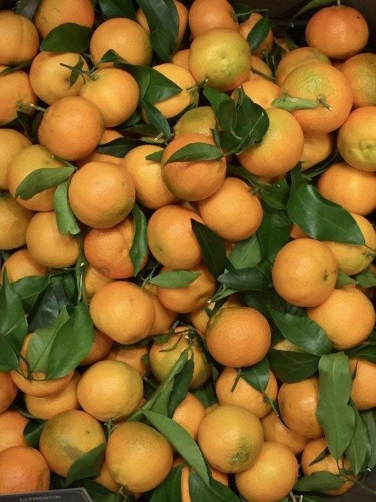 Bland de citrusfrukter som finns är clementiner väldigt populära.