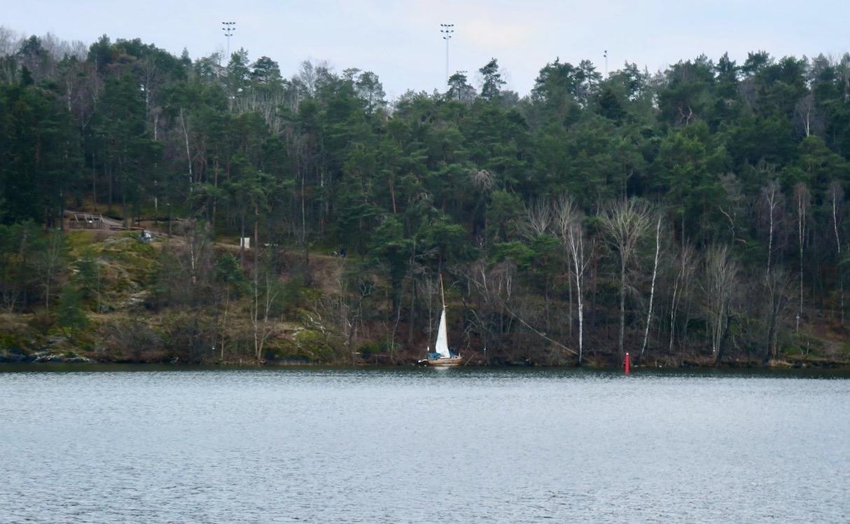 Visst är det en segelbåt på andra sidan Årstaviken. Dessutom med halva storseglet uppe.Absolut ett vårtecken.