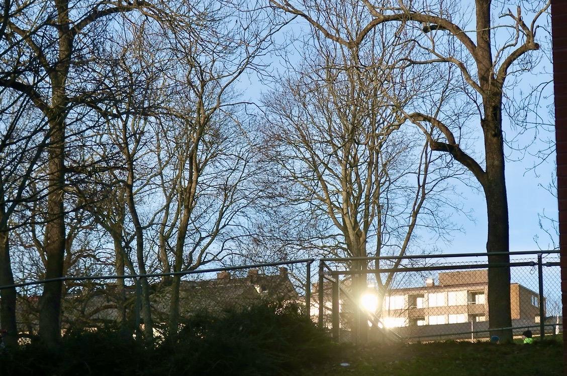 Solen tittade fram på förmiddagen och passade på att spegla sig i några fönsterruror bakom Tullgårdsparken.