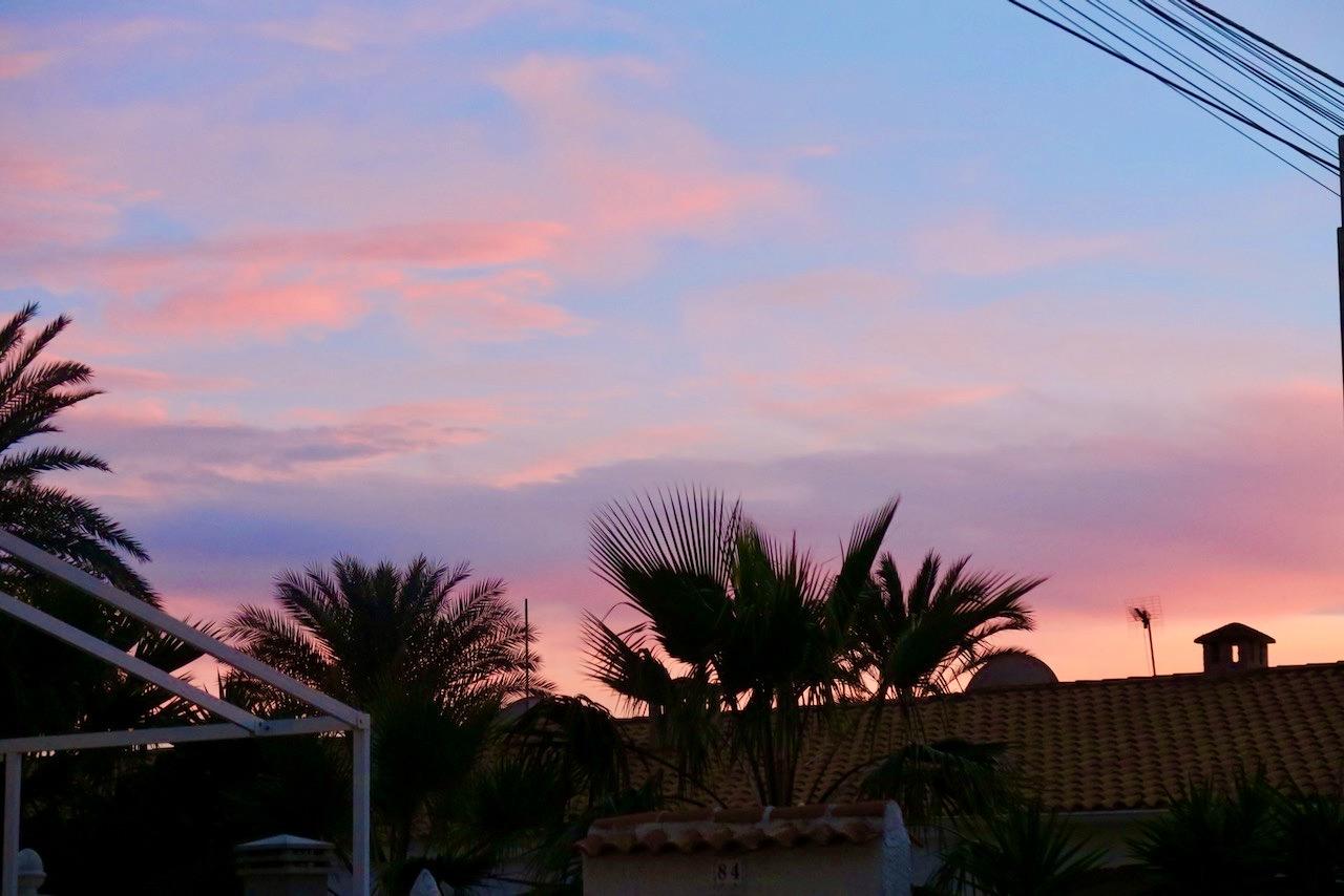 En dag i Torrevieja fylld av nytta och nöje övergår i kväll.