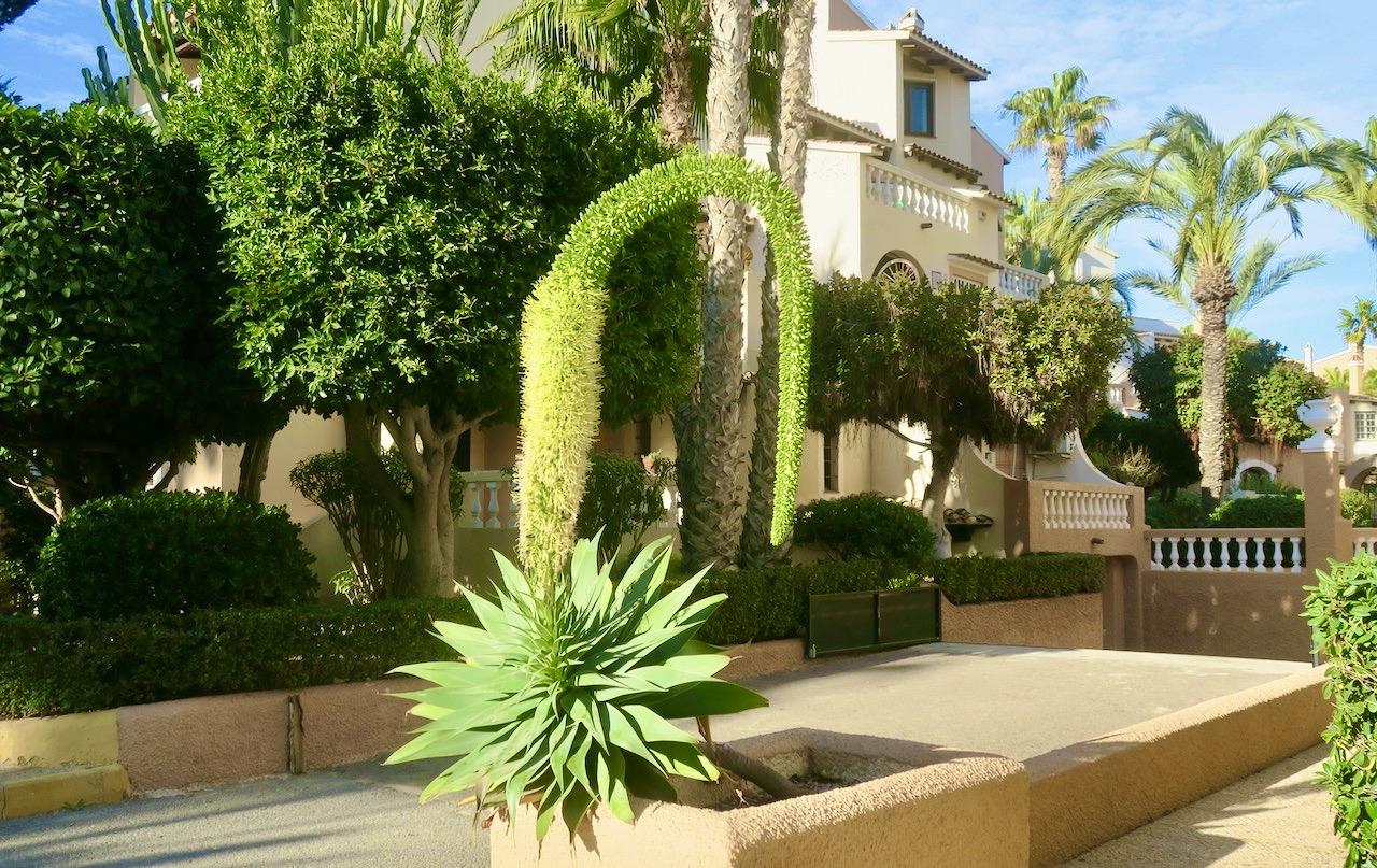 Det är lätt att trivas med all vacker grönska i Torrevieja.