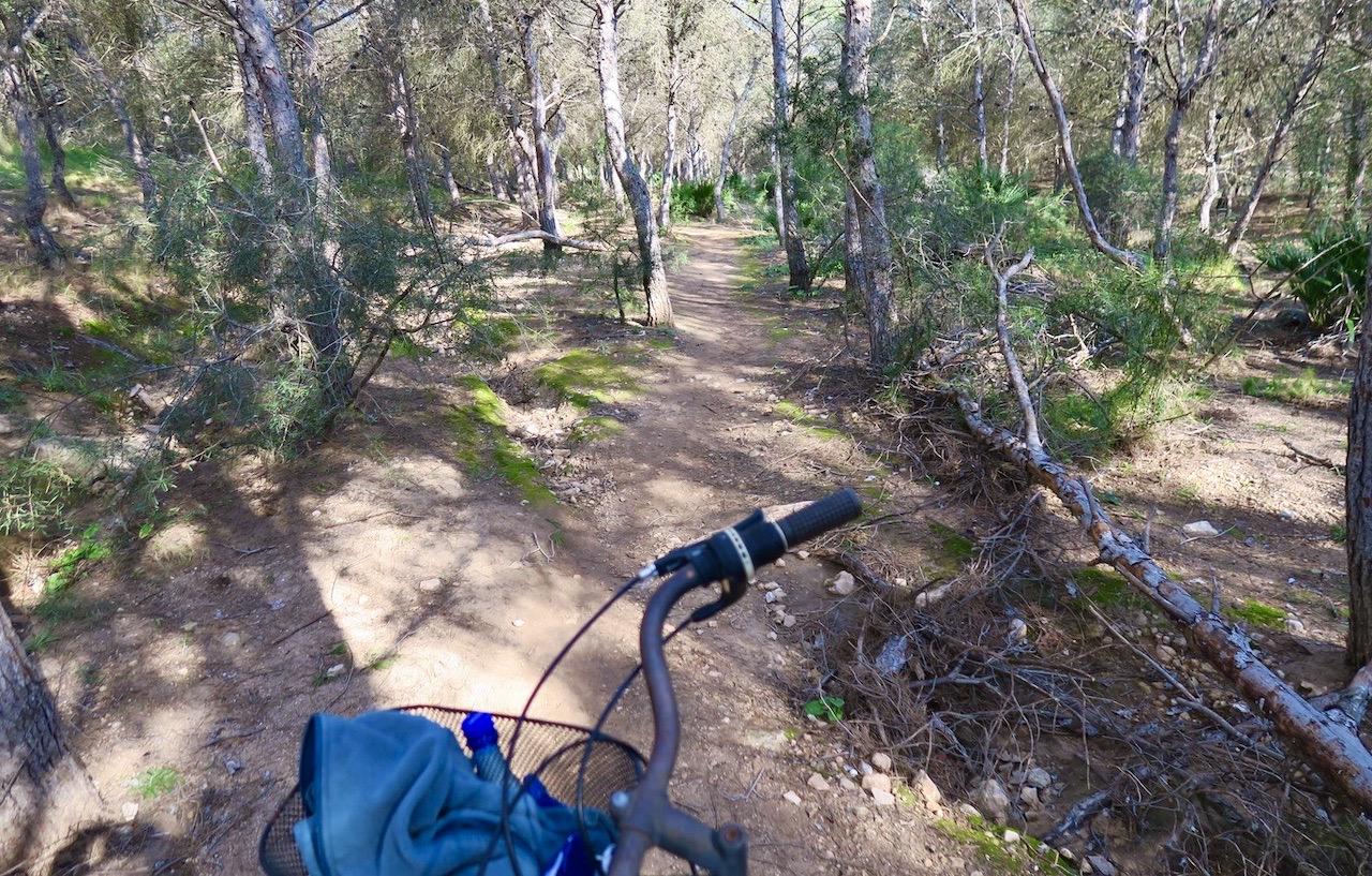 "Mer cykling mitt i naturen i naturreservatet runt ""Laguna Azul"" i Torrevieja"