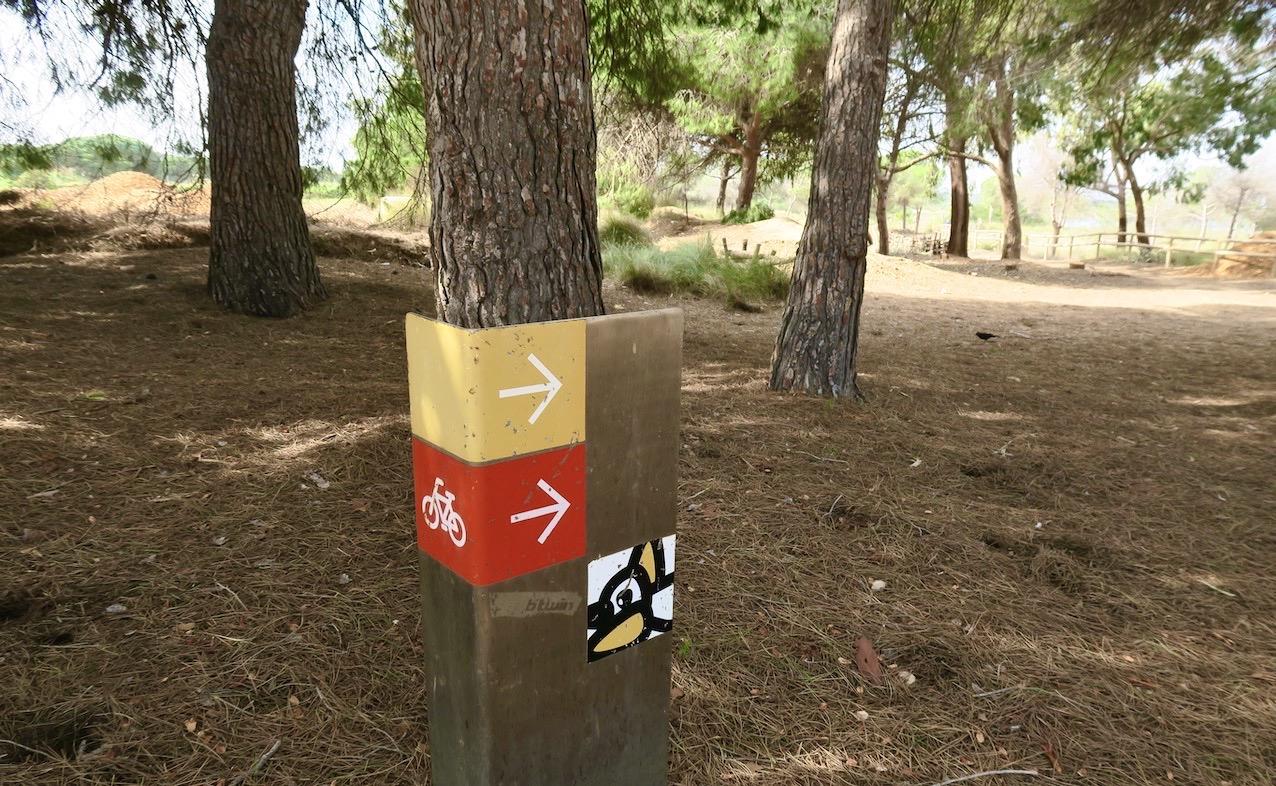 "En cykeltur i naturnära omgivningar i ""Parque Natural de las Lagunas de la Mata y Torrevieja."""
