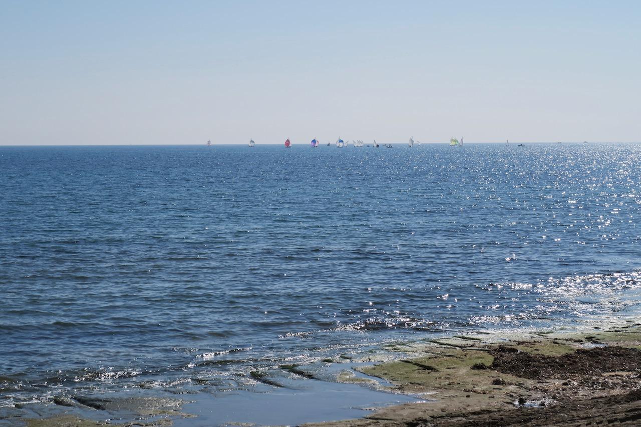 Medelhavet glittrar, solen strålar och optimistkollarna seglar