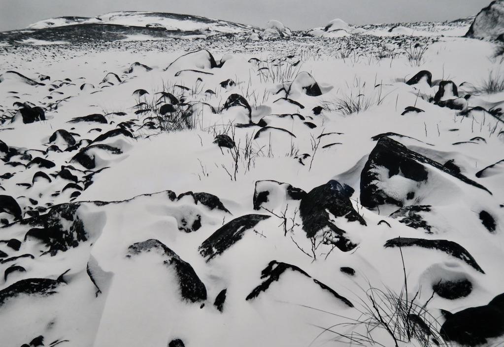 Fotografen Pentti Sammalahti avslutar i morgon, den 8/3 sin utställning på Fotografiska museet.