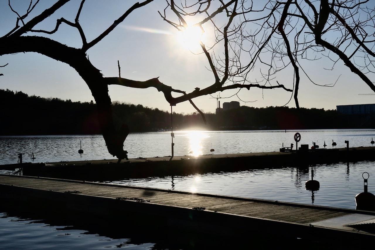 Mer solsken längs vattnet vid Årstaviken. Men från en annan vinkel. Här spellar den sig ordentligt.
