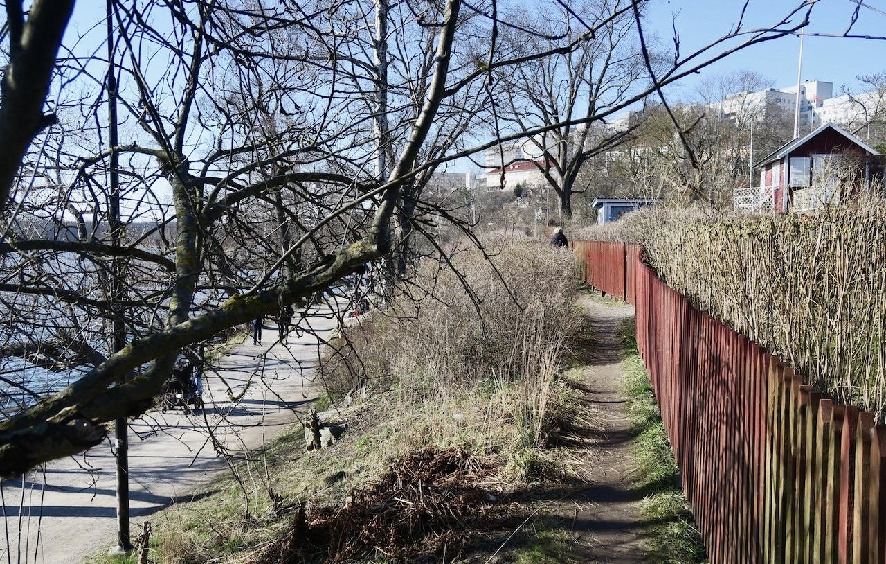 Vi tar oss vidare framåt längs Årstaviken på en upptrampad stig.