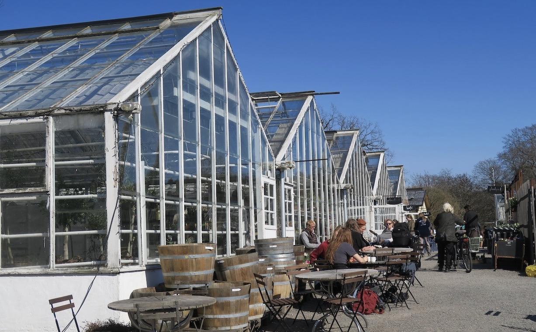 En vacker vårdag brukar locka extra många besökare till Rosendals trädgård. Även i dessa tider vad jag kunde se.